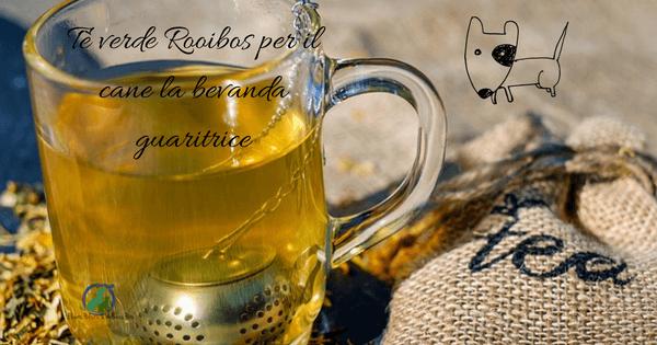 Tè verde Rooibos per il cane
