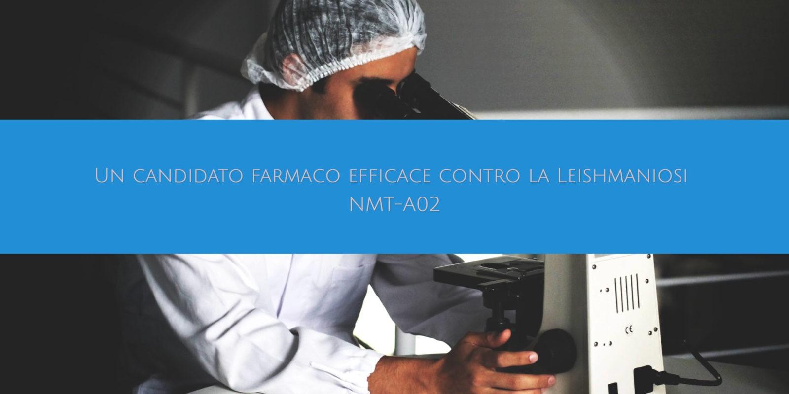 Un candidato farmaco efficace contro la Leishmaniosi NMT-A02