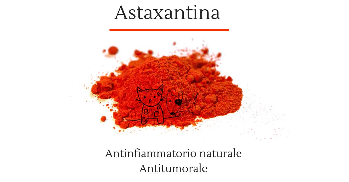 Astaxantina antinfiammatorio naturale