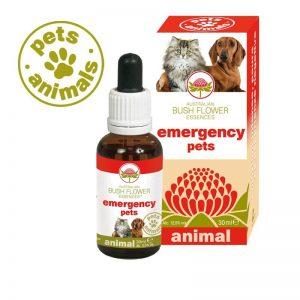 Emergency Pets