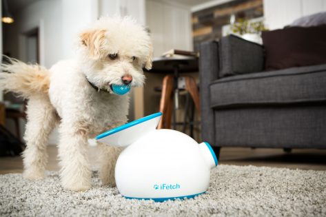 iFetch Automatic ball Launcher iFetch too