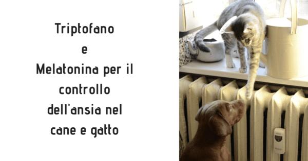 Triptofano Melatonina cane gatto