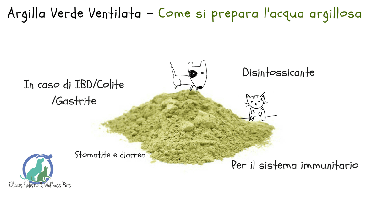 argilla verde cane gatto