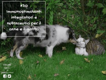 Immunostimolanti cane gatto