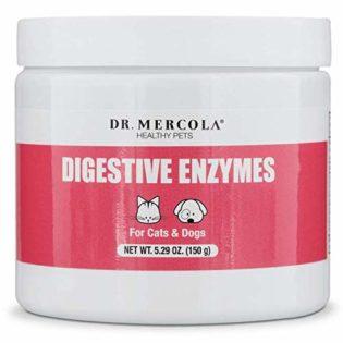 Posso dare gli enzimi digestivi al cane