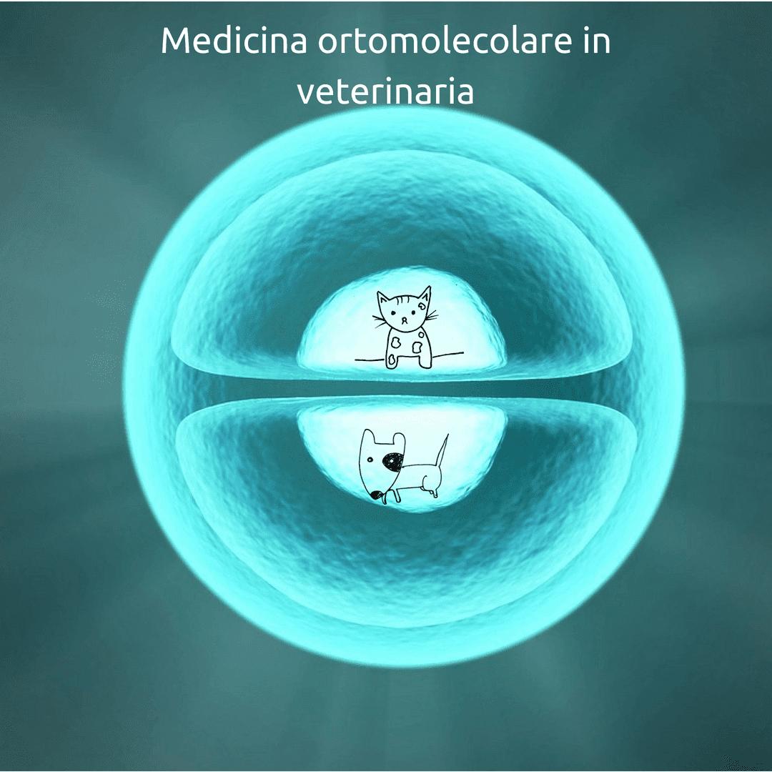Medicina ortomolecolare in veterinaria