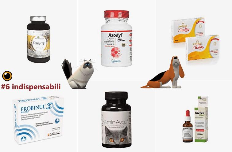 rimedi insufficienza renale cane gatto