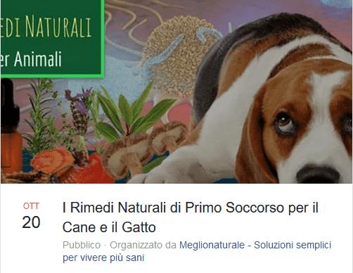 naturopatia cane gatto