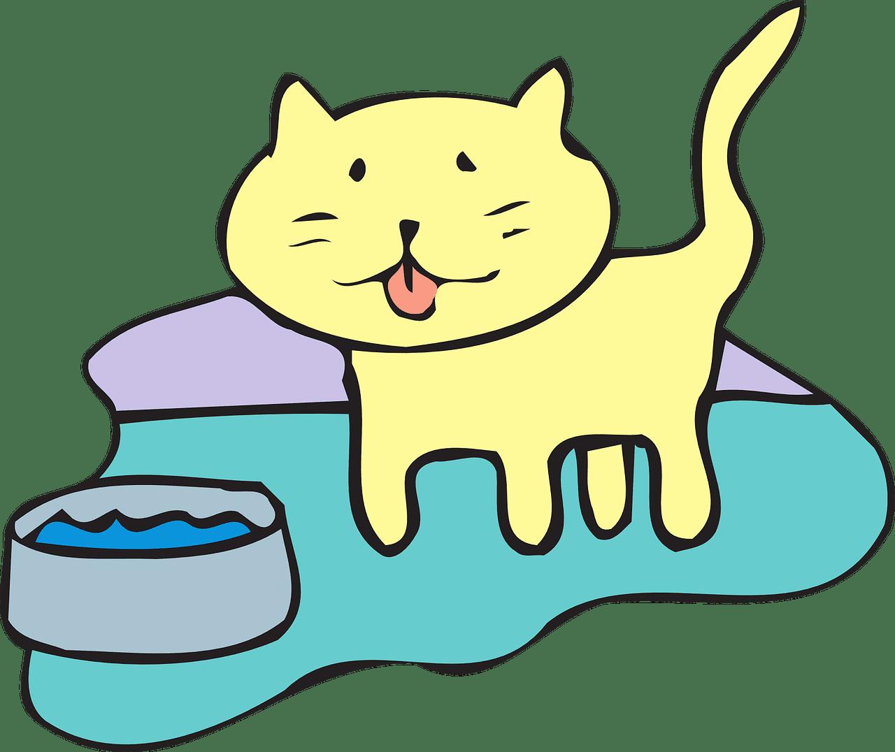 Gatto fermo davanti alla ciotola dell'acqua