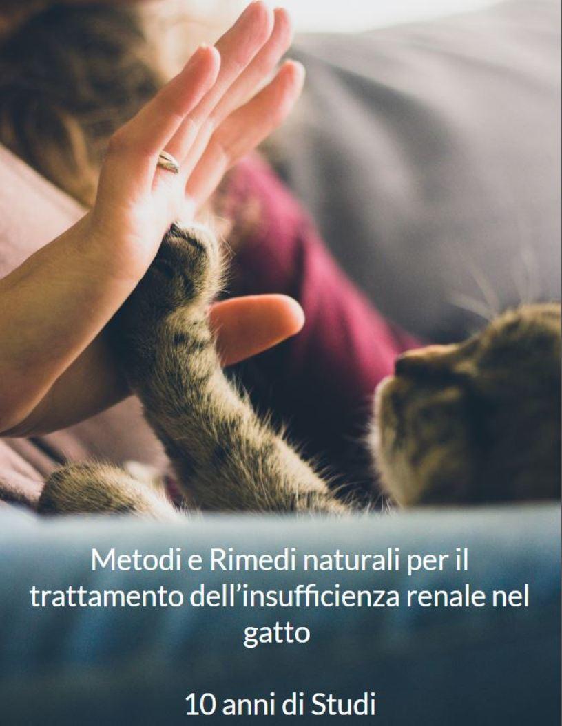 Insufficienza renale nel gatto Rimedi naturali: 10 anni di Studi Ricerca Pratica
