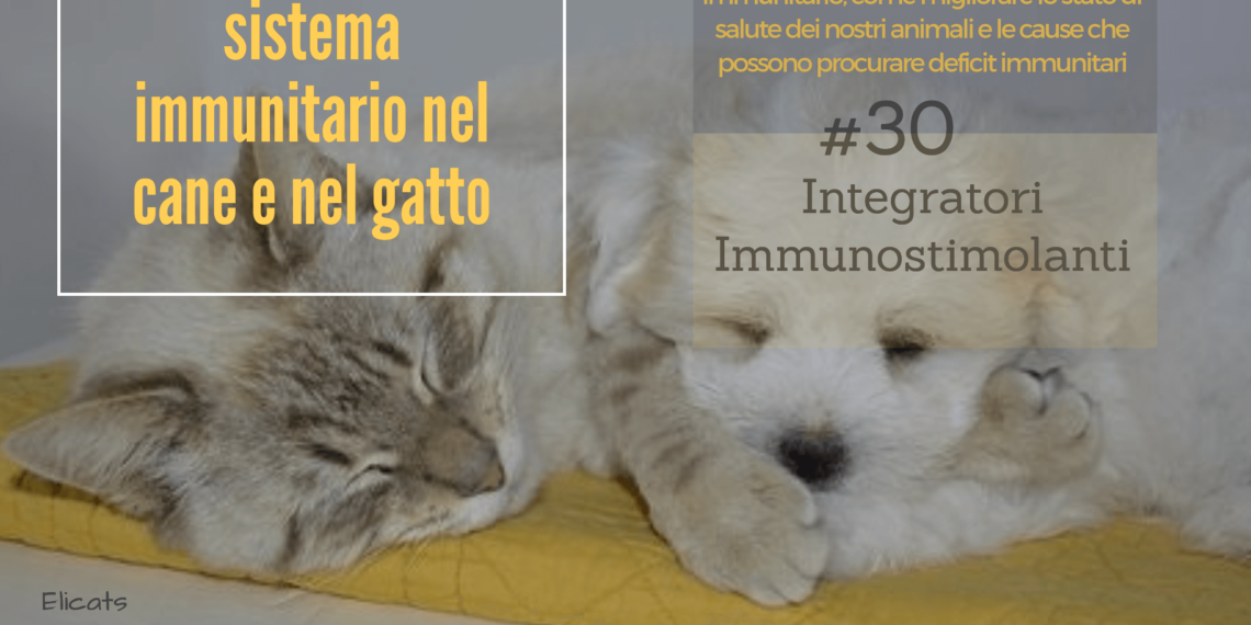difese immunitarie gatto cane