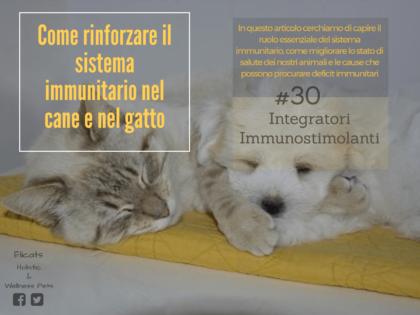 Rinforzare Sistema immunitario cane gatto