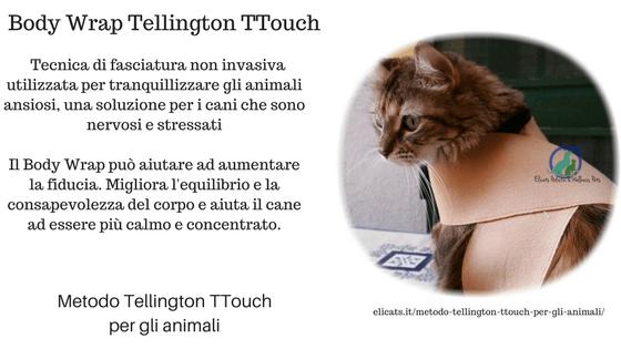 Metodo Tellington TTouch, Metodo Tellington TTouch per gli animali