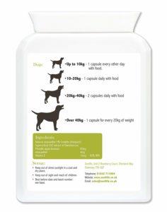 Astaxantina antinfiammatorio naturale, Astaxantina antinfiammatorio naturale e antitumorale cane gatto