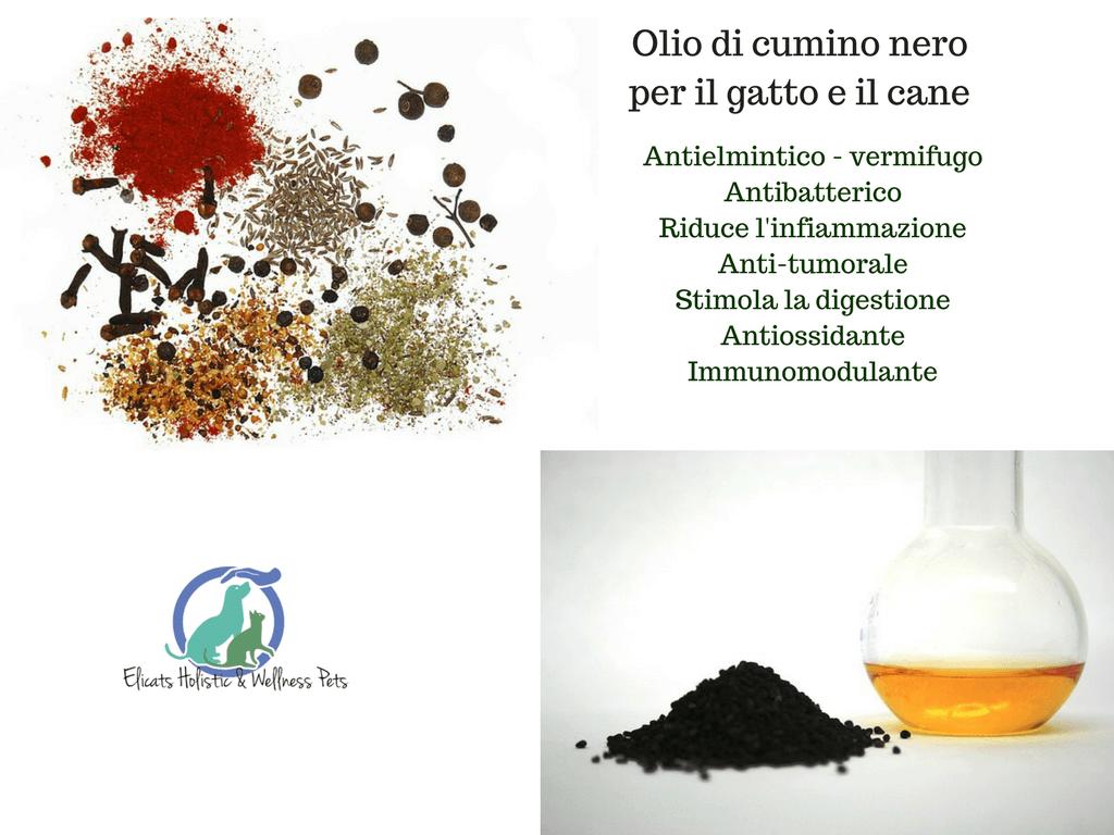 olio cumino nero