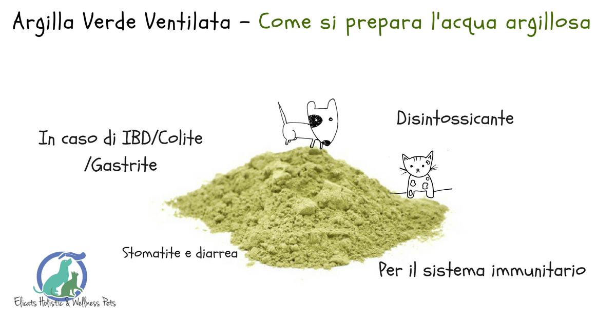 Argilla verde cane gatto, Argilla verde cane gatto Come Preparare l'acqua argillosa