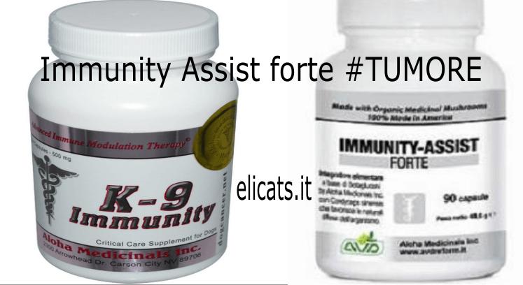 k-9 Immunity Vs Immunity Assist forte #TUMORE