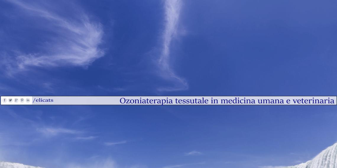 Ozoniaterapia tessutale in medicina umana e veterinaria