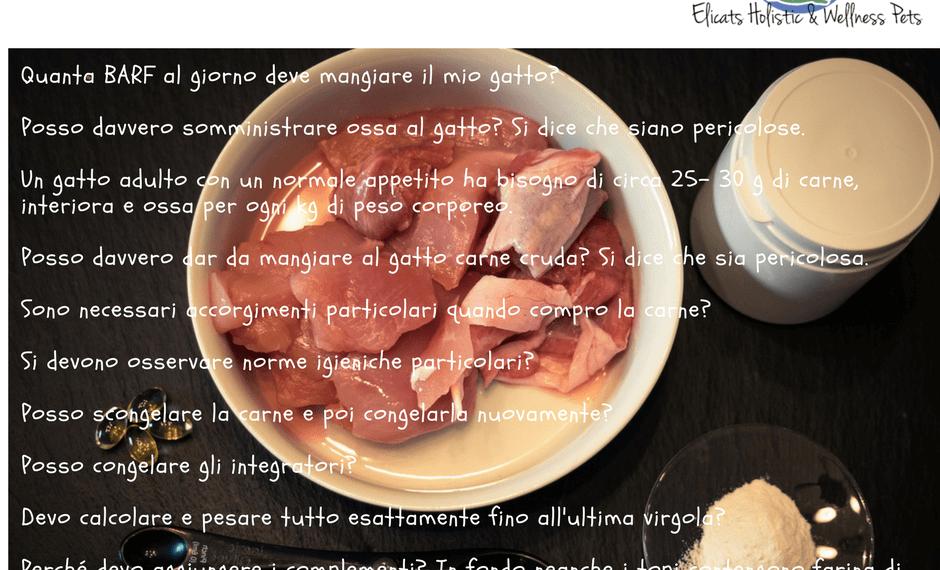 blog la mia dieta zoppica instagram