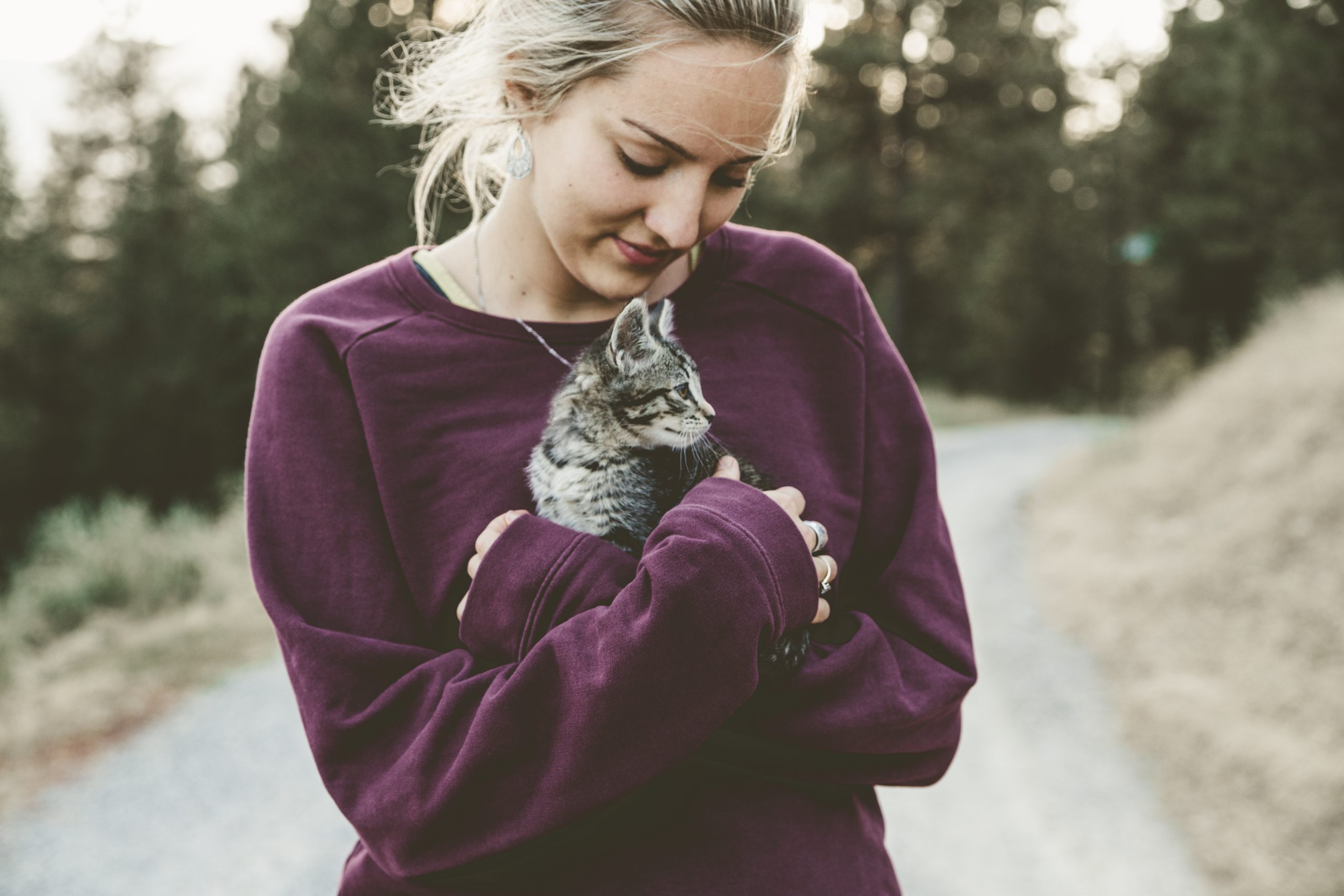 ibd cane gatto cure naturali