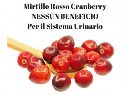 Mirtillo Rosso, Mirtillo Rosso Cranberry NO BENEFICI Sistema Urinario