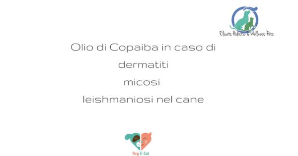 Olio di Copaiba, Olio di Copaiba in caso di dermatiti micosi leishmaniosi nel cane