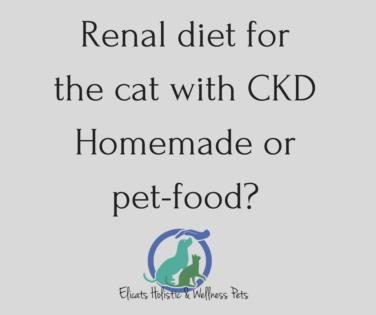 Renal diet for the cat, Renal diet for the cat Homemade or pet-food?