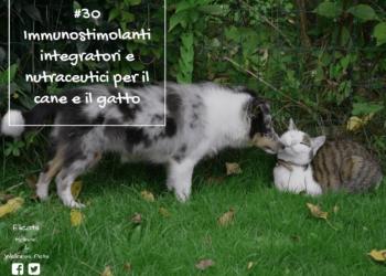 Integratori Immunostimolanti cane gatto