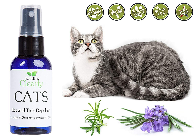 pulci gatto rimedi naturali