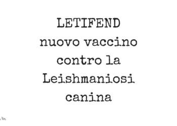 Letifend nuovo vaccino contro la Leishmaniosi canina