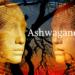 Ashwagandha per Alzheimer e Parkinson