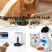 Dispenser croccantini gatto