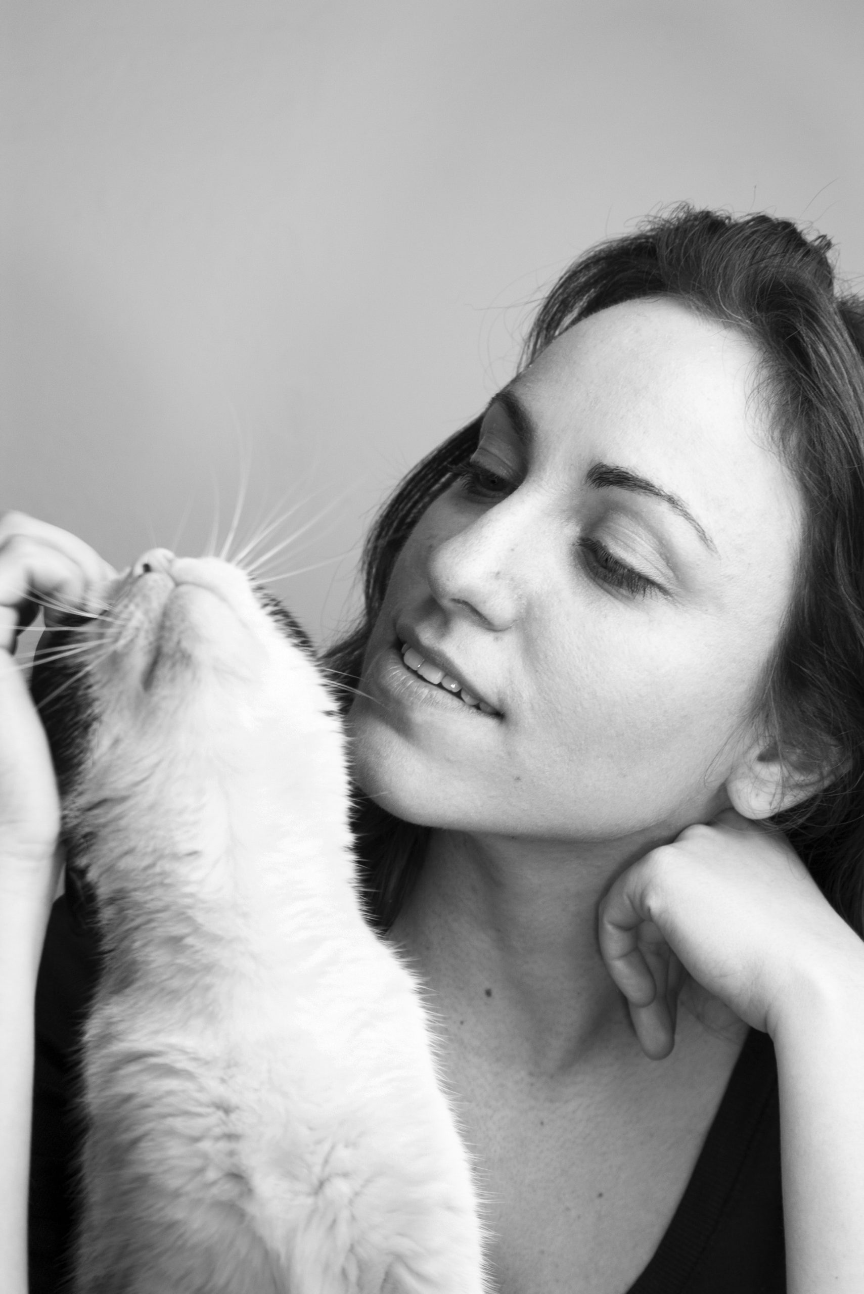 Ipertiroidismo insufficienza renale gatto