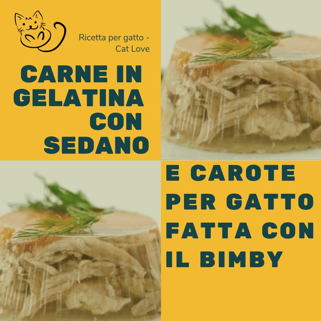 pet food gatto Bimby