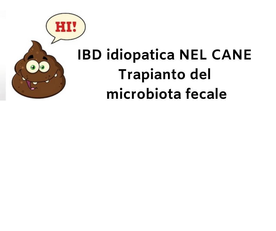 IBD idiopatica NEL CANE Trapianto del microbiota fecale
