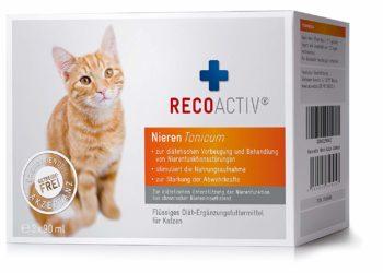 recoactive nieren tonicum