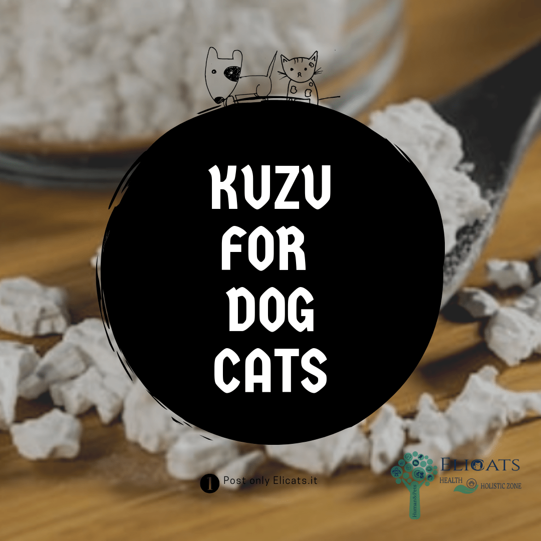 Kuzu dogs cats