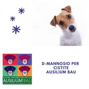 D-mannosio cane cistite