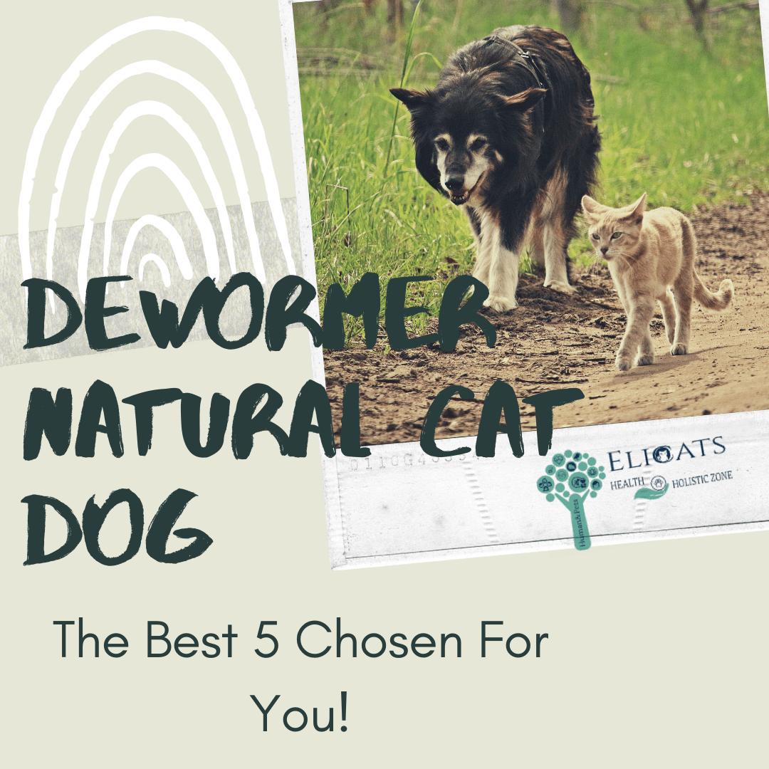 dewormer natural dog cat