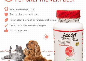 insufficienza renale gatto dialisi