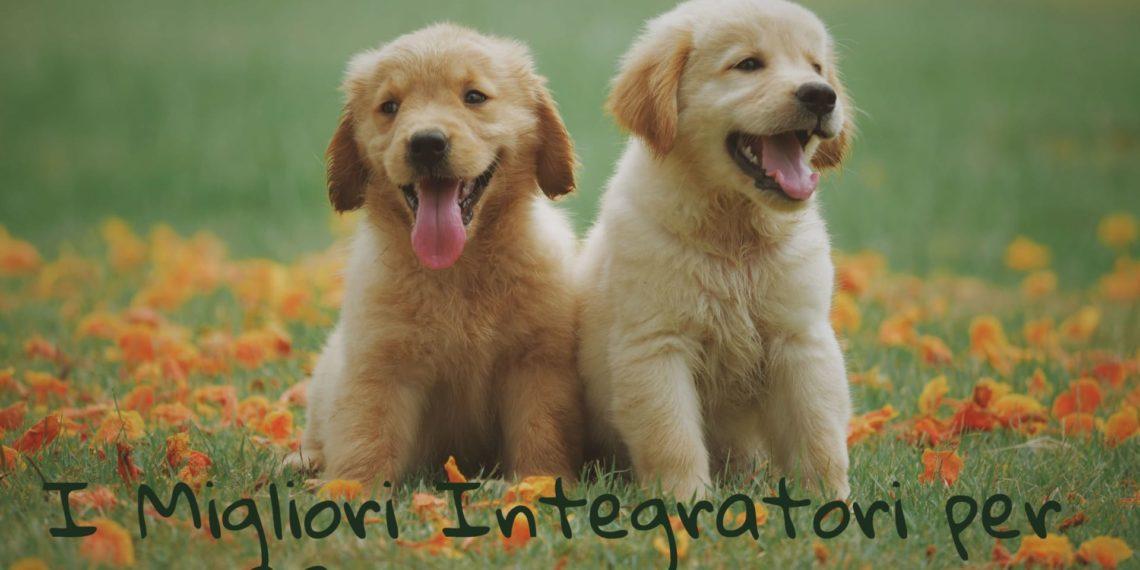 migliori integratori per insufficienza renale cane