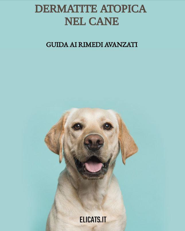 Dermatite Atopica nel cane Cambia Pelle
